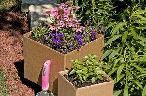 Trik Untuk Memastikan Kemasan Lebih Ramah Lingkungan